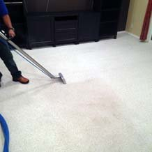 Bellevue LM Carpet Cleaning Services